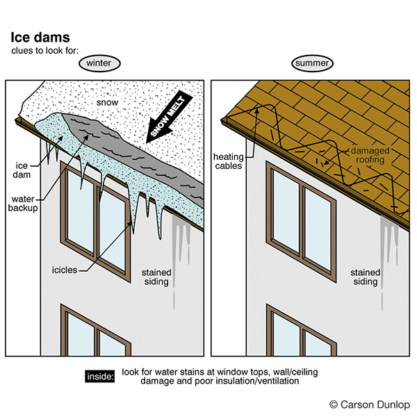 Illustrated Home Jpeg Images